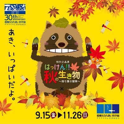 特別企画展「はっけん!!秋の生き物 ~落ち葉の冒険~」